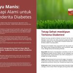 KAYU MANIS (Cinnamon) Natural Therapies for Diabetics
