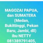 Magozai PAPUA dan SUMATERA – NETTY 087880308884 MELA 081316288035