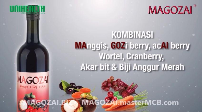 penjelasan MAGOZAI, The King of Antioxidant , dan harga Magozai