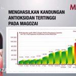 Magozai palu sulawesi YUYUN 08115115577 – Magozai toko agen distributor jual obat herbal Soho Farmasi