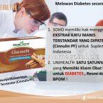 obat Diabetes paling Murah sedunia GLUCOSEFIT 081281755257