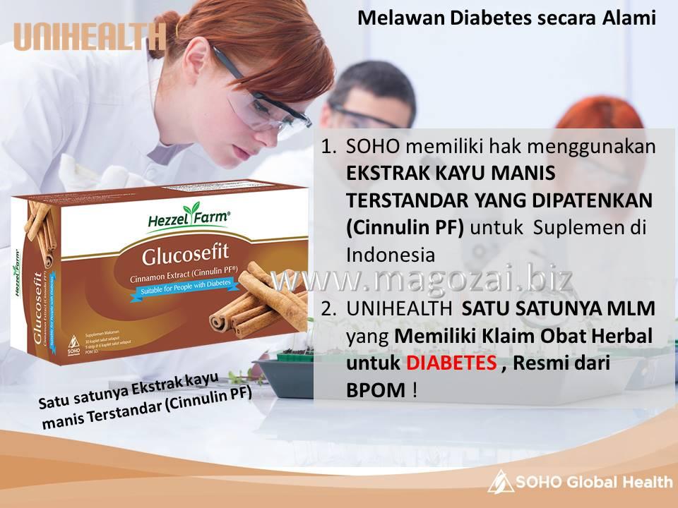 obat diabetes GLUCOSEFIT 081281755257 paling Murah sedunia