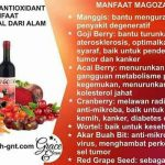 magozai pekalongan jawa tengah 087887428148 NOVI – Magozai toko agen distributor jual obat herbal Soho
