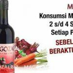 Magozai di Sumatera Sulawesi Jawa Kalimantan Papua Bali Nusa Tenggara Maluku 2018 2019