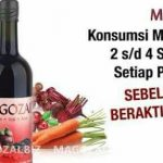 magozai tegal jawa tengah 087887428148 NOVI  – Magozai toko agen distributor jual obat herbal Soho
