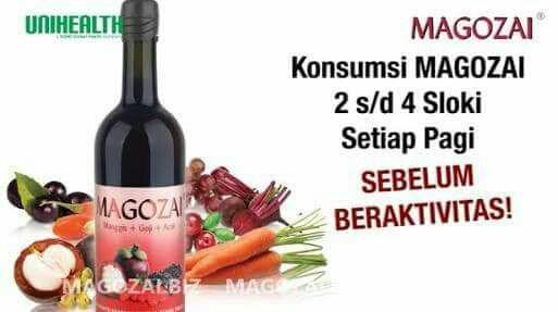 Magozai Sumatera Sulawesi Jawa Kalimantan Papua Bali Nusa Tenggara Maluku 2018