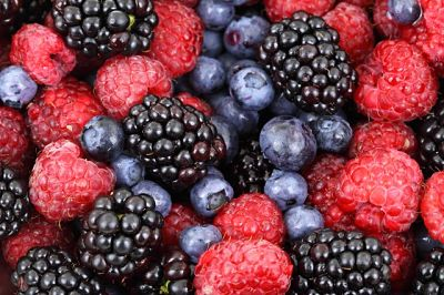 buah-beri-antioksidan-magozai-087873600620