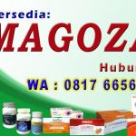 MAGOZAI di Lampung Bengkulu 0817-6656-567 Terlengkap Starkidz Slim Health Langsing Astagen Gold Legres Best Seller Indonesia Aman Murah Terpercaya