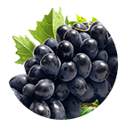 anggur.png